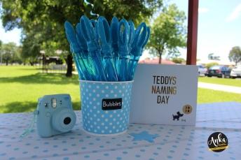 Teddys Naming Day 1