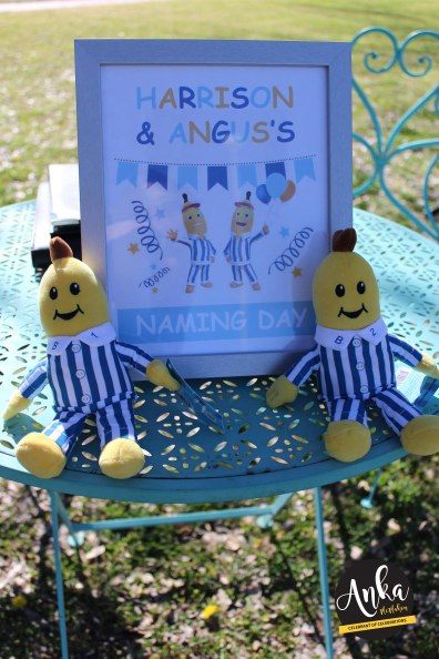 Harrison and Angus Naming days